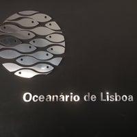 Photo taken at Oceanário de Lisboa by Дмитрий Б. on 8/9/2012