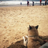 Photo taken at Huntington Dog Beach by ahleesue on 7/7/2012