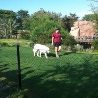 8/13/2012 tarihinde Bryan F.ziyaretçi tarafından Cheetah Run'de çekilen fotoğraf