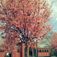 Das Foto wurde bei McCarren Park von Amanda G. am 3/13/2012 aufgenommen