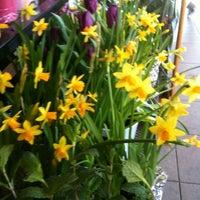 Photo prise au Trader Joe's par Lucy D. le1/28/2012