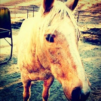Photo taken at R Ranch in the Sequoias by Addisyn E. on 12/28/2011