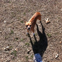 Photo taken at Fort Woof Dog Park by Johnny C. on 12/31/2011