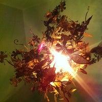 Photo taken at Gorila Café by sanDru H. on 1/15/2012