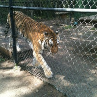 Photo taken at Catty Shack Ranch Wildlife Sanctuary by Rick P. on 3/31/2012