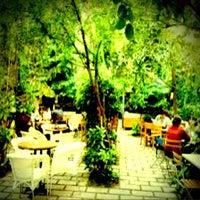 8/22/2012 tarihinde İzzet S.ziyaretçi tarafından Limonlu Bahçe'de çekilen fotoğraf