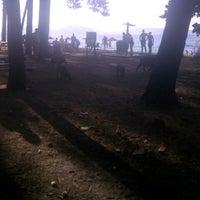 8/21/2012 tarihinde Emin K.ziyaretçi tarafından Dilek Yarımadası - Büyük Menderes Deltası Milli Parkı'de çekilen fotoğraf