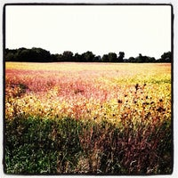 Photo taken at Thiensville, WI by Aaron L. on 9/12/2012