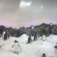 Photo taken at SEA LIFE Melbourne Aquarium by Viraj W. on 4/6/2012
