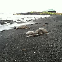 Photo taken at Punalu'u Black Sand Beach by Donna Mc on 8/30/2012