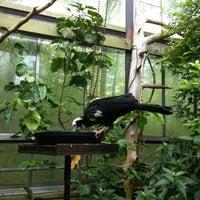 Photo taken at Americas Pavillon by Nithin R. on 7/21/2012