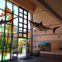 Photo taken at Birch Aquarium At Scripps Institution of Oceanography by Fred R. on 5/29/2012