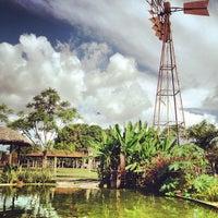 Photo taken at O Celeiro by Diego F. on 6/17/2012