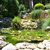 Photo taken at Zilker Botanical Gardens by Chris on 8/9/2012
