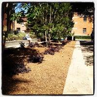Photo taken at UCLA Perloff Hall by Lilianna N. on 5/15/2012