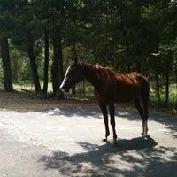 Photo taken at The Coleman Farm by Kristin C. on 8/14/2011