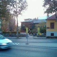 11/12/2011にLaci K.がTermészettudományi Múzeumで撮った写真