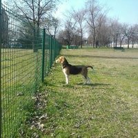 Photo taken at Parco Cani Via Gandhi by Emanuele B. on 6/1/2011