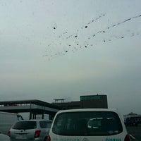 4/24/2012にとしパパが垂水港フェリーターミナルで撮った写真