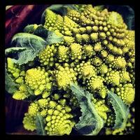 Photo taken at Santa Monica Farmers Market by Leo J. on 6/20/2012