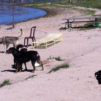 Photo taken at Dog Beach by Larry D. on 8/26/2012