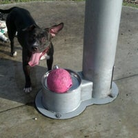 Photo taken at West Kendall Hammocks Dog Park by Danny t. on 6/27/2012