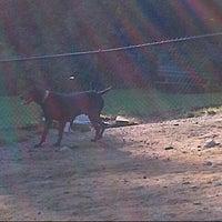 Photo taken at Ridgefield Bark Park by Debralee H. on 9/13/2012