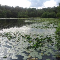 Photo taken at Lightwater Country Park by James P. on 7/21/2012