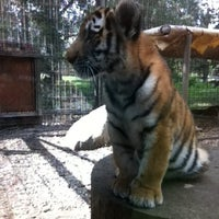 Photo taken at Calgary Zoo by Jean-philippe D. on 8/3/2012