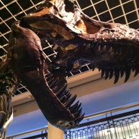 Photo taken at The Academy of Natural Sciences of Drexel University by Michael W. on 8/19/2012
