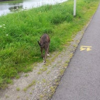 Photo taken at Kanaalweg Oost- en Westzijde by Edwin W. on 8/14/2012