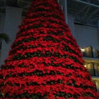 Photo taken at Gaylord Opryland Resort & Convention Center by Meaghan V. on 12/26/2011
