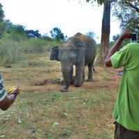 Photo taken at Wild Elephas by Pasan J. on 7/2/2012
