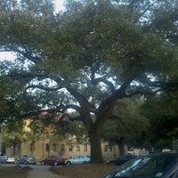 Photo taken at Louisiana State University by Kathryn S. on 10/9/2011