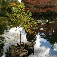 Photo taken at Cambridge University Botanic Gardens by Andrius S. on 9/18/2011