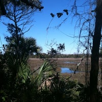 Photo taken at The Theodore Roosevelt Area at Timucuan Preserve by Xt B. on 3/6/2011