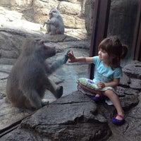 Photo taken at Prospect Park Zoo by Alex Z. on 8/20/2012