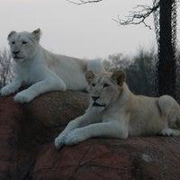 Photo taken at Toronto Zoo by Jesse H. on 5/3/2012