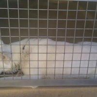 Photo taken at Humane Society of El Paso by Ray M. on 11/2/2011