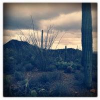 Photo taken at Arizona-Sonora Desert Museum by bekki h. on 1/17/2012
