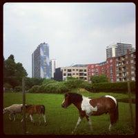 Photo taken at Parc Scheutbospark by Barbara on 6/20/2012