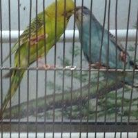 Photo taken at Vida Animal by Jonas G. on 5/9/2012