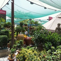Photo taken at Dubai Garden Center دبي جاردن سنتر by Barton J. on 5/5/2012