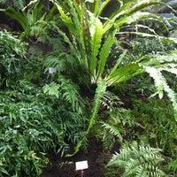 Das Foto wurde bei Botanisches Museum von Matthias H. am 4/10/2012 aufgenommen