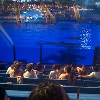 Photo taken at Shamu Theater by Ed C. on 4/15/2012