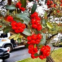 Photo taken at Passeto by Hikarudo S. on 6/1/2012