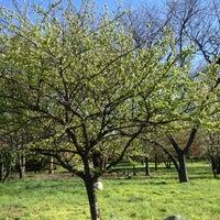 Photo prise au Queens Botanical Garden par Dunia S. le4/7/2012