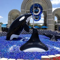 Photo taken at SeaWorld San Antonio by Rocio 🐼 on 5/19/2012