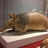 Das Foto wurde bei Evolutionsbiologiskt Centrum (EBC) von Staffan W. am 2/19/2012 aufgenommen