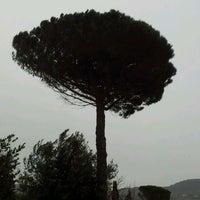 Photo taken at Relais Il Falconiere Hotel Cortona by Denis R. on 2/27/2012